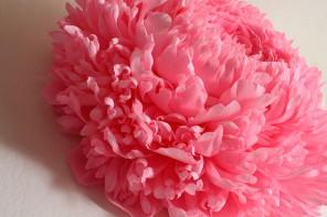 Fleurs en papier façonnées par Tiffanie Turner