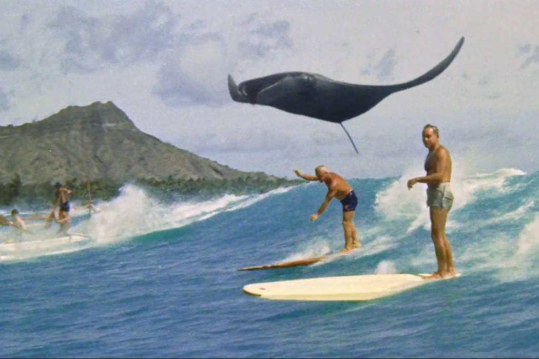Up&up, une aventure surréaliste par Vania Heymann