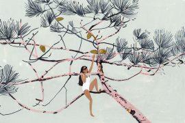 Illustrations aux techniques mixtes par Katrin Coetzer