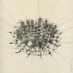 Detailed and elegant drawings by Broll & Prascida