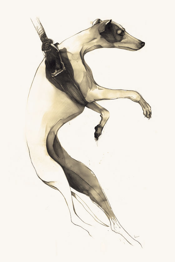 dog drawing by Kareena Zerefos