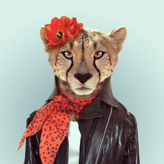 Zooportraits by Yago Partal