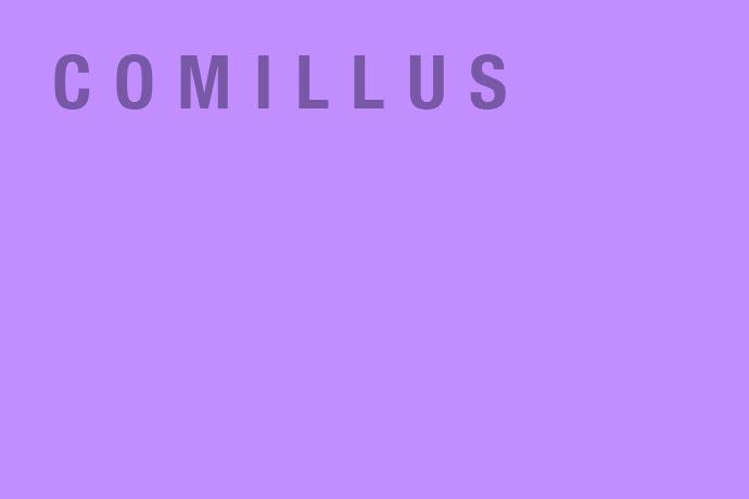 Comillus - illustration agency - France