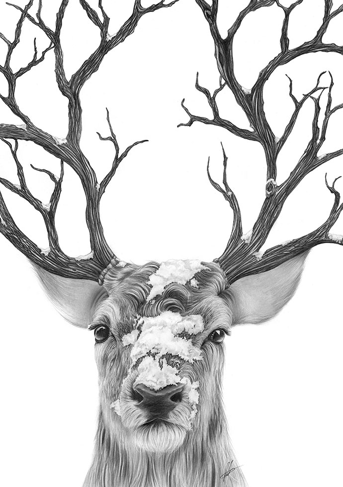 Stock Illustration Stylized Image Tattoo Beautiful Forest Deer Head Horn Horns Patterns Black White Graphics Image50637759 likewise Head Of Deer With Horns 10736925 further Simple Elk Drawing besides Hand Drawn Deer Antlers Vectors 1375510 also Stock Illustration Set Antlers Silhouette Vector Black Silhouettes Different Deer Horns Image47516229. on drawn deer antlers