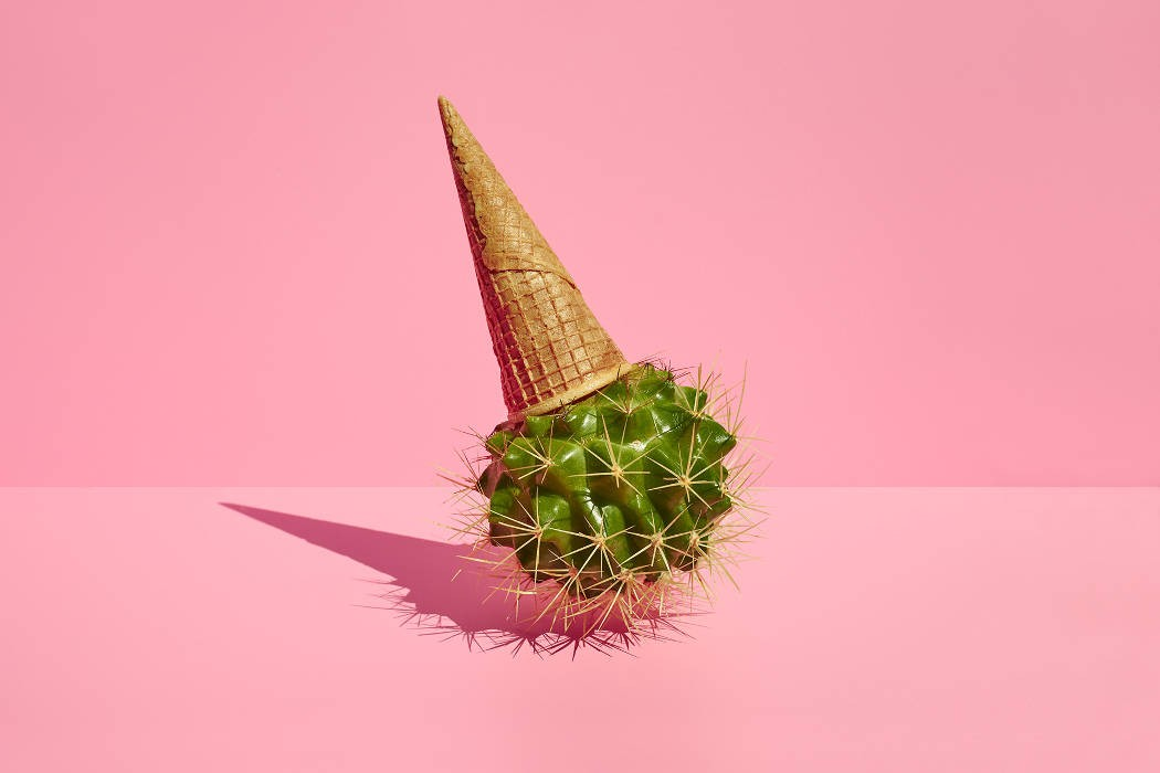Cool still life by photographer Paloma Rincon