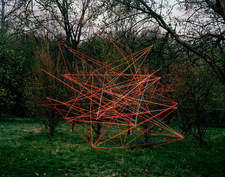 Emergent Behavior by Thomas Jackson