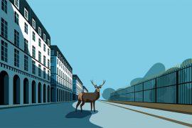 marie-bastille-illustration-agency-arnaud-tracol